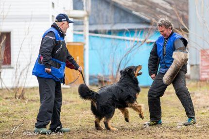 Гриня на IV рабочем семинаре для ховавартов в Екатеринбурге