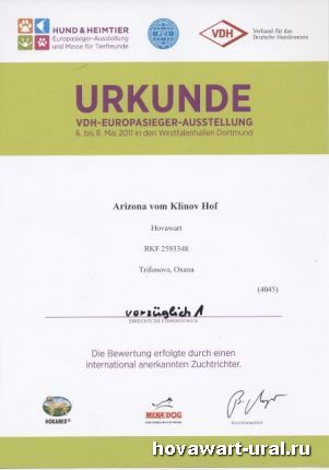 Рика - Победитель класса в Дортмунде