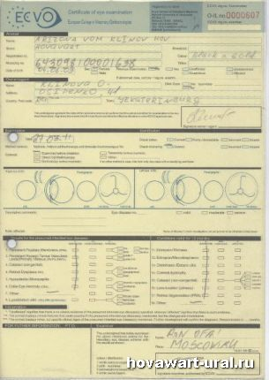 Сертификат ECVO Рики