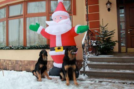 Охрана Деда Мороза