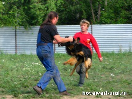 Летающий ховик Гринго :-)