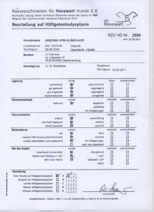 Сертификат Рики HD-A1