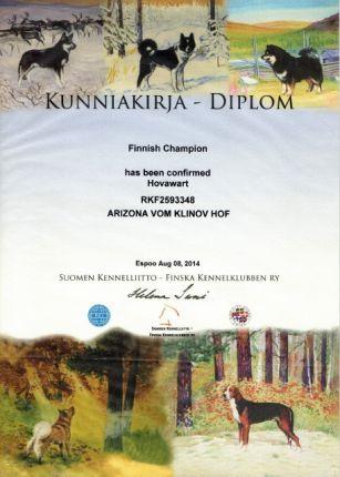 Рика - Чемпион Финляндии