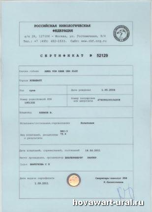 Диплом Ани по ЗКС - 3