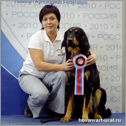Россия - 2010. Акелло