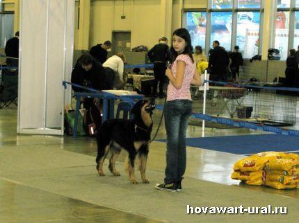 Рикуся и Иришка перед рингом :-)
