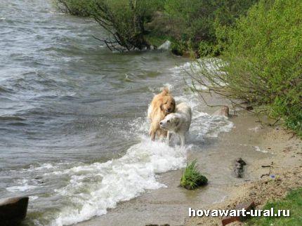 солнце, лето и вода наши лучшие друзья