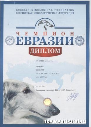 Рика - Чемпион Евразии!