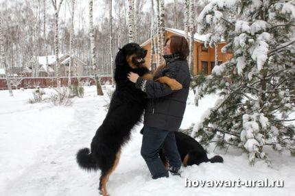 Брусникин и мама :-)