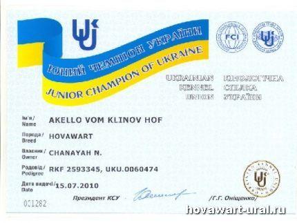 Акелло - Юный Чемпион Украины