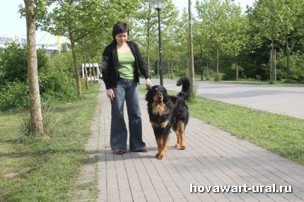 Дортмунд 2011 Акелло и Наталья