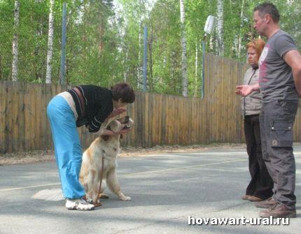 Наталья и Варя учат аппортировку