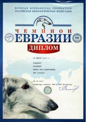 Макар - Чемпион Евразии
