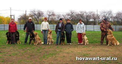 Хови-команда нашей площадки.