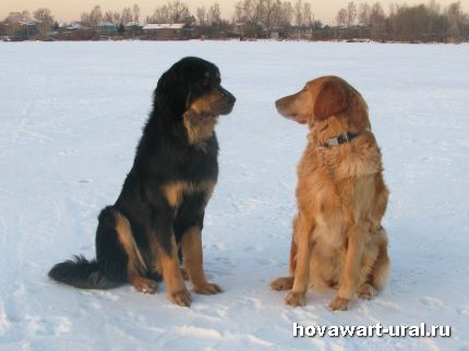 Сладкая парочка - Макар и Анечка!