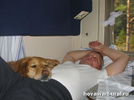 Сладкий сон под стук колес :-)