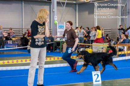 Гринго - ВОВ на выставке в Москве