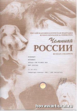 Аполло - Чемпион России!